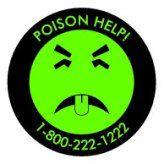 Candeggina e altri prodotti chimici domestici nocivi per i tuoi animali domestici
