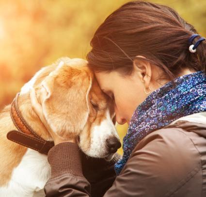 Il tuo cane ti ama davvero?