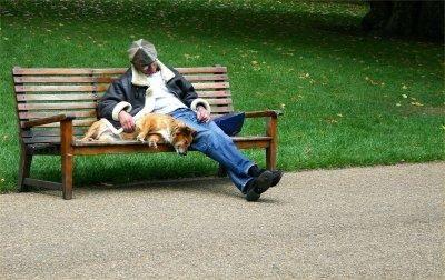 Parchi per cani