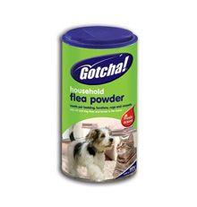 Polvere pulce per animali domestici