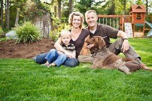Consigli per la pulizia verde per i proprietari di cani