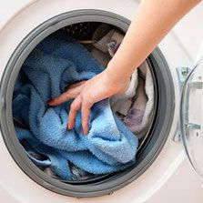 Come rimuovere e uccidere facilmente le pulci nei vestiti