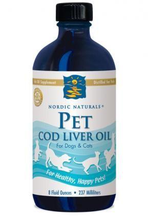 Intervista: acidi grassi nordici naturali omega-3 per cani