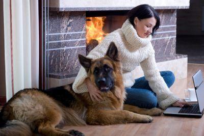 Mantenere i cani e la famiglia al sicuro