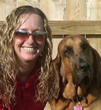 Il groomer professionista kelly haggard offre consigli sulla cura del cane