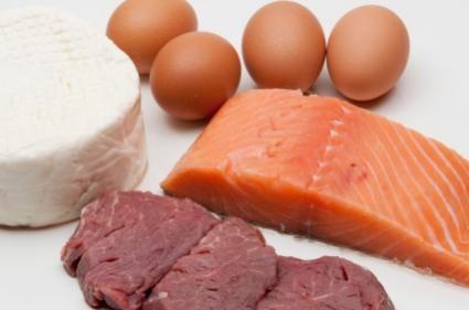 Fonti proteiche per cani