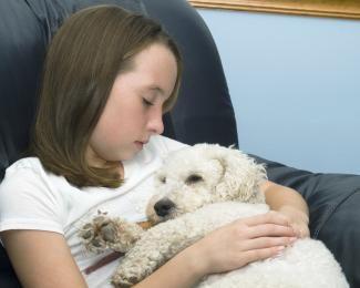 Segnali di pericolo un cane sta morendo