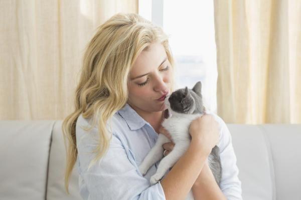 Perché i gatti amano una persona più di un`altra?